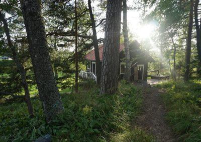Rozwiń skrzydła-Finlandia-19